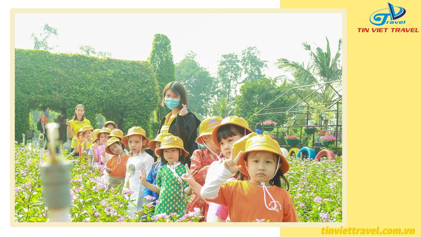 cánh đồng hoa nhị bình